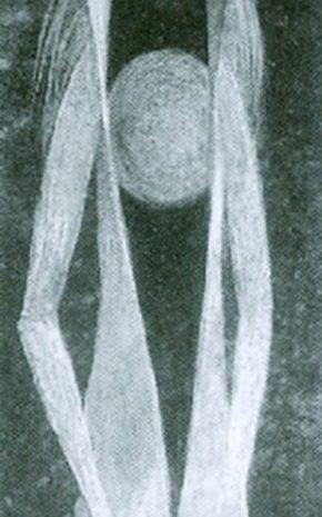 Esquiador, 1960.